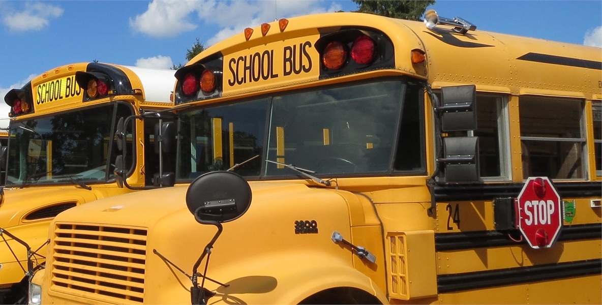 picture of 2 school busses